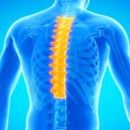 kas tepalas reikalingas osteochondrozės