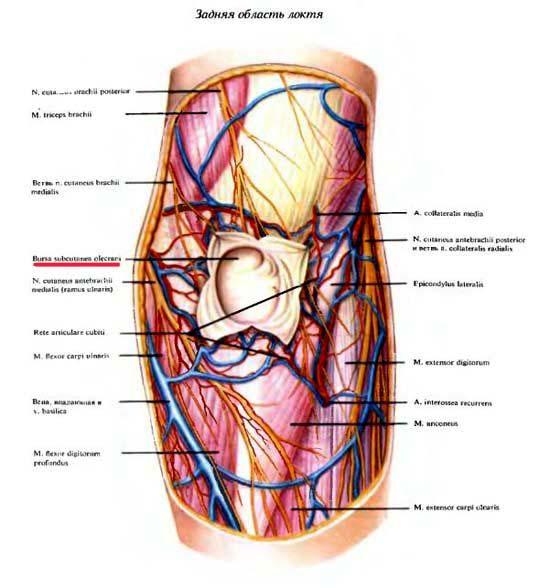 gerklės alkūnės sąnario kai lankstant rankas spustelėkite sąnarių skausmai
