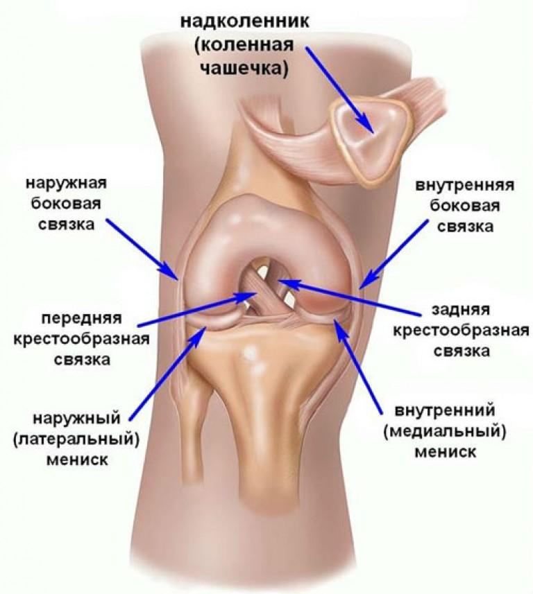 nervai skausmas raumenyse sąnarių gydymas sąnarių vilklige