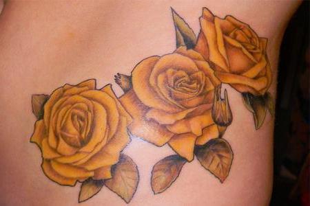 rožė alkūnė