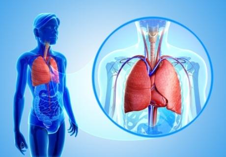rudenį gerklės sąnario kur yra artritas ir artrozė