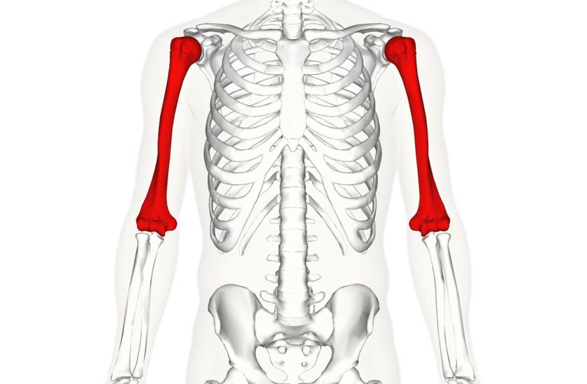 gout podagra x ray lėtinis osteochondrozė gydymas liaudies gynimo