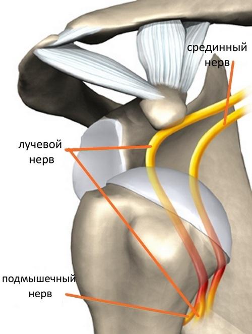 populiarus vaistas kurio skausmas pėdos sąnarių